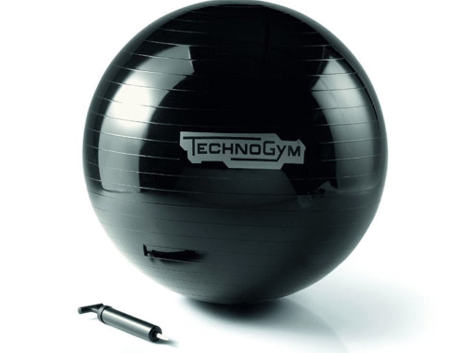 Technogym Wellness Ball